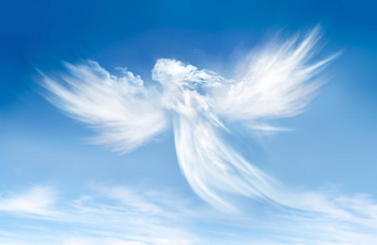 Anges du ciel 1